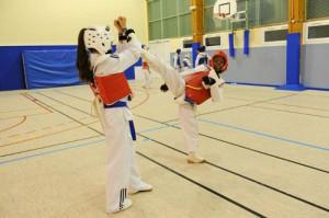 Taekwondo_2_R